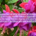 Campo de Flores, autor: Carlos Drummond de Andrade